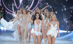 Victoria Secret Fashion Show 2014