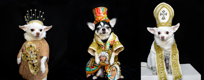 Anthony Rubio Met Gala 2018 Heavenly Bodies Dog Fashion Untitled-3 NEW 100